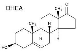 DHEA - testosterone booster ingredients to avoid