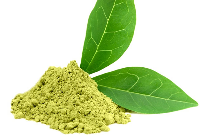 Picture of green tea extract in powder form with leaves showing how natural it is.